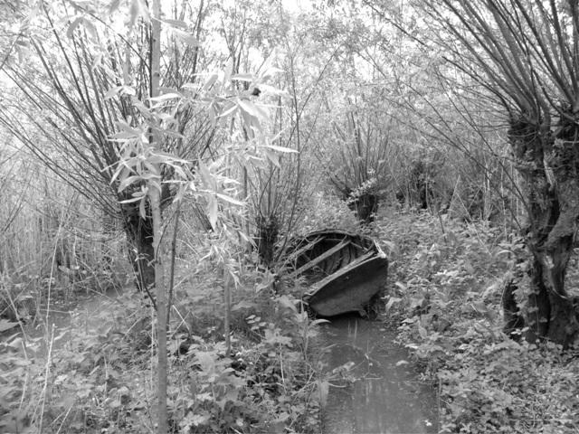 Nationaal Park De Biesbosch - Biesbosch 75 jaar bevrijd